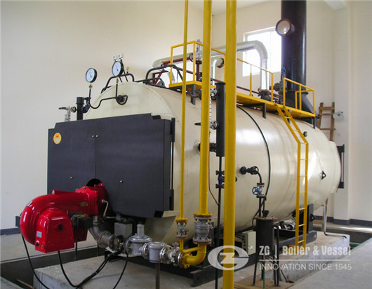 energy saving natural gas fired steam boiler in Bolivia